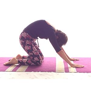 Posizione yoga biḍālāsana