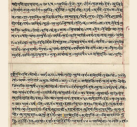 Immagine in evidenza dell'articolo sulla lingua sanscrita