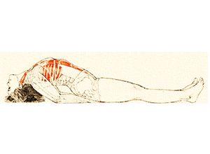 Posizione yoga matsyāsana मत्स्यासन