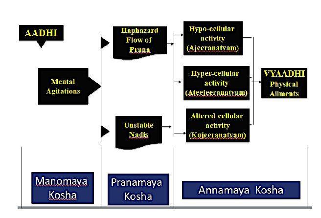 schema a rettangoli dello yogavasista
