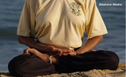 foto del busto di uno yogi