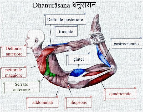 Posizione yoga dhanurāsana