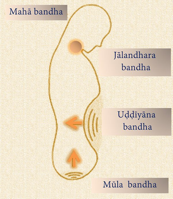 Immagine stilizzata del mahā bandha
