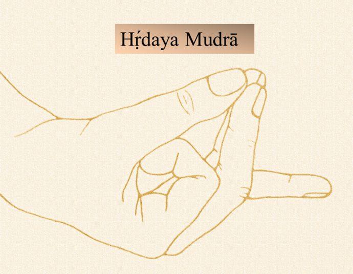 Immagine didattica del Hṛ́daya Mudrā