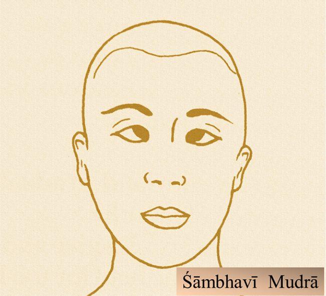 Immagine didattica di Śāmbhavī Mudrā