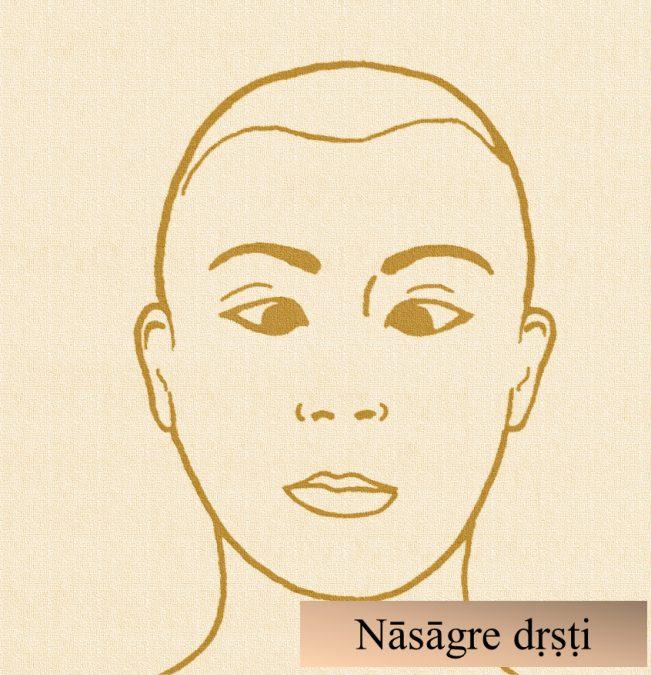 Immagine didattica di Nāsāgre dṛṣṭi