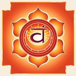 Immagine del cakra svādhiṣṭhāna