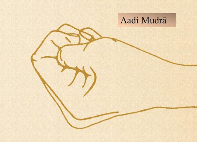 Immagine didattica del Aadi Mudrā