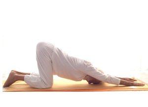 Posizione yoga dhārmikāsana