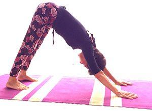 Posizione yoga adho mukha śvānāsana